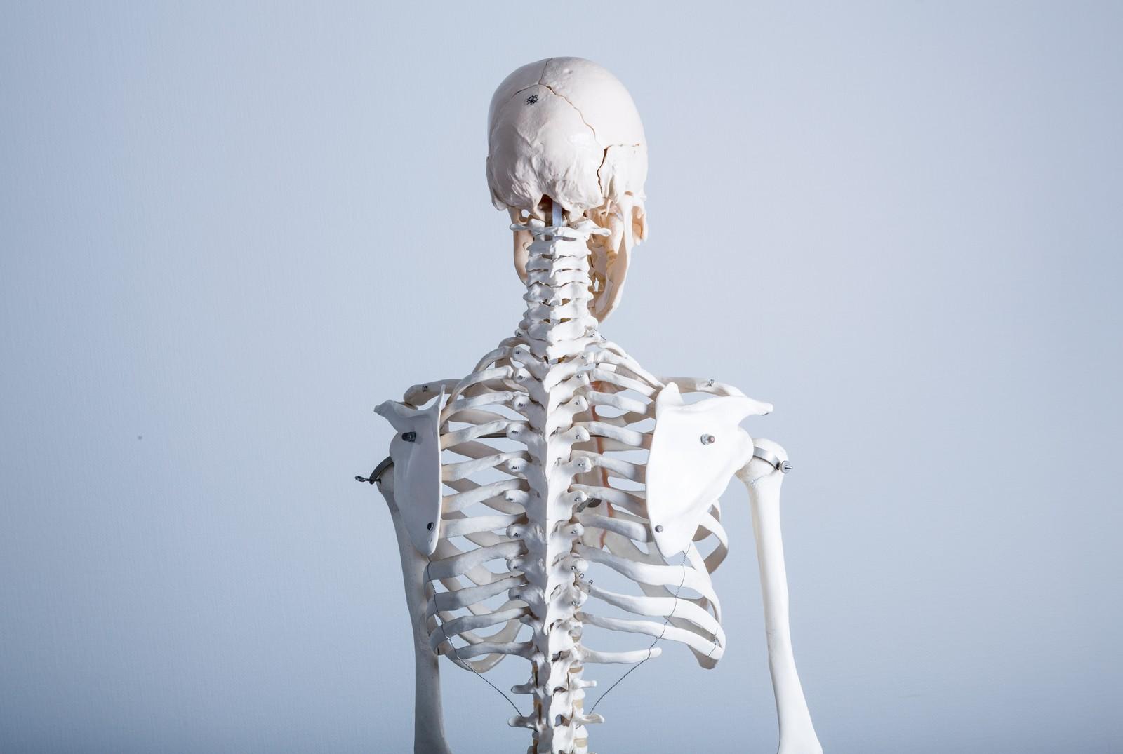 猫背を治して体調改善!?背骨を正しい形に保つマットレスとは?