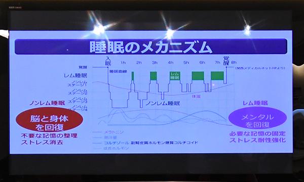 第2回スペシャルフレンズラン Supported by ライズTOKYO 開催レポート5